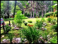 Grandpa's memorial garden