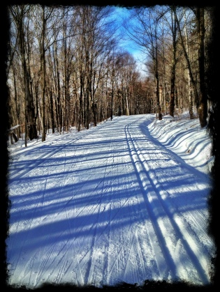 Ski Trail. Yes and Thank you.