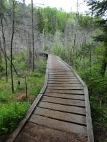 Crossing the bog.