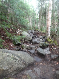 Trail to Phelps