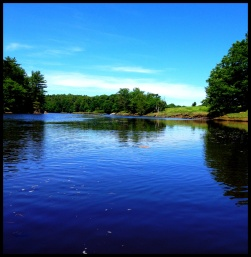 I went Kayaking in the Kennebunk River. Going with the tide much easier than against it.