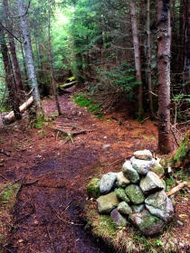 Mount Marshall trail split from Calamity Brook Trail