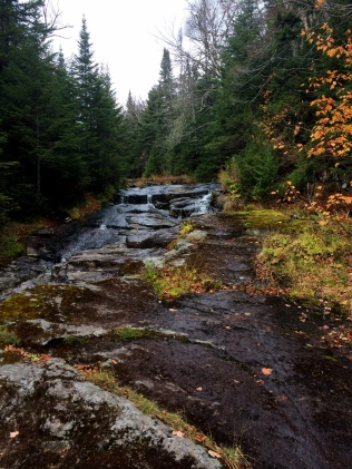 Mount Marshall: Walking up Herbert Brook