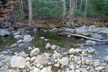 Typical water level for Indian Pass Brook - Photo Credit - www.herdpath.com