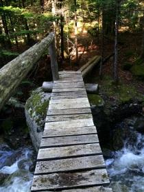 Bridges with guardrails seem fancy now.