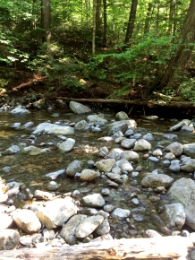 Calkins Brook.