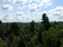 Wild Center - Wild Walk - View from the Bird's Nest. Somehow is both pretty and unimpressive after hiking the ADKs.