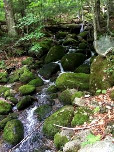 John Brooks Trail