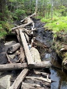 Poor broken bridge. Now a muddy, wet mess.