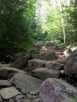 Trail to Algonquin Peak