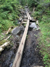 Mud bridges. My fav.